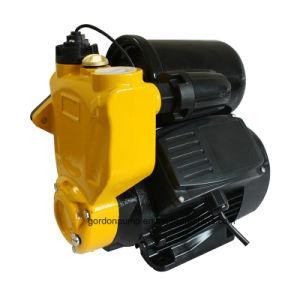 Поверхность домашних электрических центробежных периферийных струи воды под давлением насос с бака