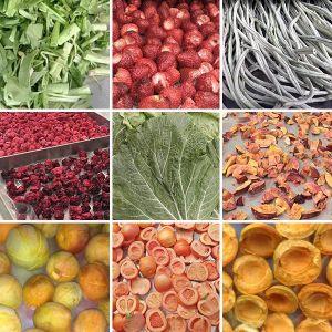 Alimentation industrielle Lyophilizer de séchage de fruits Légumes Lyophilisateur Machine vide