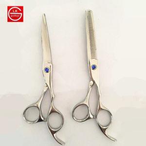 6cr les cheveux de haute qualité en acier inoxydable Paire de ciseaux