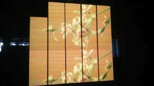L'intérieur plein pour une soirée d'affichage vidéo couleur partie