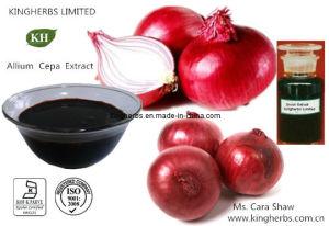 Allium Cepa Extraia Spiraeoside, Extrato de cebola, quercetina / Atividade antibacteriana