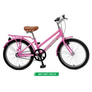 La ville de 20, le vélo de montagne, VTT, Lady Bike/vélo - MK20219