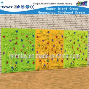 Het beklimmen van Apparatuur HF-19001 van de Speelplaats van de Kinderen van de Reeks van de Speelplaats Openlucht