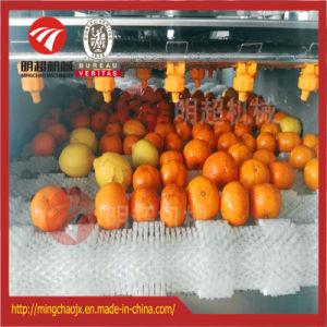 De de parallelle Wasmachine van het Fruit van de Borstel en Wasmachine van het Wortelgewas