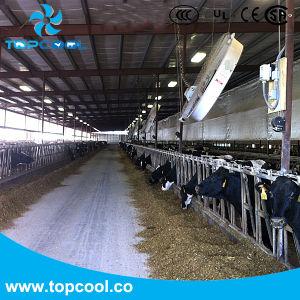 Ventilatore 72 del comitato dell'alloggiamento della vetroresina di alta qualità  per ventilazione del bestiame con la prova di Amca