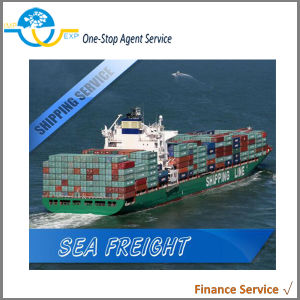 유럽에 바다 Shipping Freight From 중국