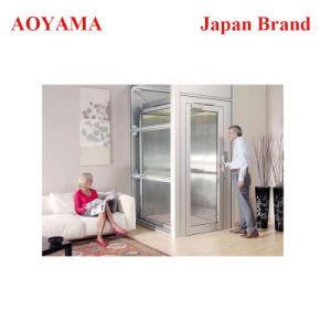 Petite maison de Type Traction Ascenseur Ascenseur pour l'Aîné