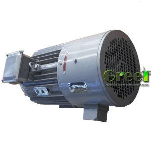 750kw水上飛行機および風の使用のための3段階AC常置Magenet発電機