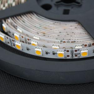 Strisce flessibili DC12V del LED