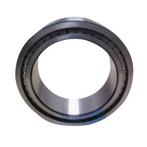 Cuscinetti a rullo cilindrici del complemento completo Nnf5011