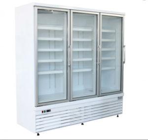 Il verticale di vetro del portello ha sudato la vetrina libera del supermercato del congelatore per il negozio di alimentari