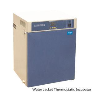 Thermostatische Water-Jacket van het Gebruik van het laboratorium Incubator met Digitale Vertoning