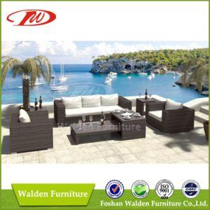 Sofá de mimbre Muebles de jardín (DH-6620)