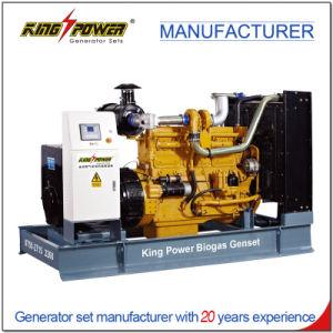 40kw générateur de gaz Bio meilleur prix avec fonctionnement en parallèle
