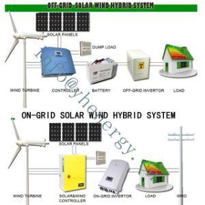 Turbina de viento generador eólico de 220 Voltios 5kw Precio