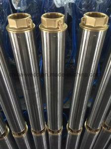 4DD de la pompe à eau submersibles6/15 pour usage domestique (WEDO)
