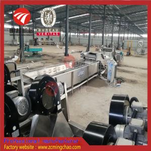 El lavado de verduras de raíz automático de la línea de procesamiento de secado