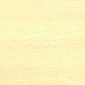 Les portes du Film de protection de la surface du grain du bois