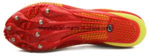 Deportes atlético ejecutando Cricket Trail Spike zapatos (817-816)
