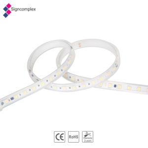 Il nuovo prodotto IP65 impermeabilizza 5050 SMD flessibili il LED, la tensione 220V della striscia del LED con Ce RoHS