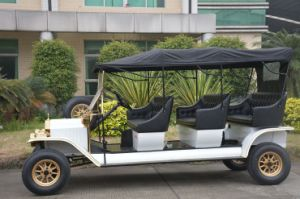 新しいInpowerのコントローラ8人のクラシックカーのゴルフ手段
