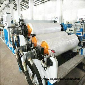 extrusión de polímeros de doble husillo de la máquina para hacer la hoja