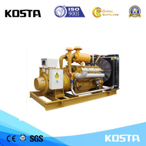 225ква экономичным дизельным двигателем в Шанхае генератор с ISO и стандартам CE