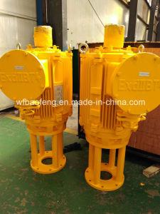 Unità al suolo progressiva dell'azionamento della pompa buona della pompa del PC della pompa della cavità