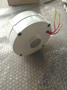 Fábrica! 100W gerador do alternador do ímã permanente da C.A. Pmg
