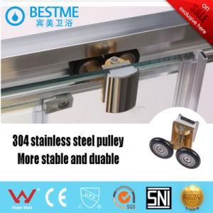 Aluminio barato Ducha Ducha ducha Alojamiento (BM-B8808)