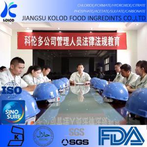 De Acetaat van het Kalium van het Additief voor levensmiddelen