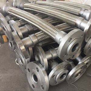 Tubo flessibile di Teflon Braided del collegare PTFE dell'acciaio inossidabile 304&321&316