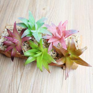 Сад оформлены Искусственные растения Succulents растений