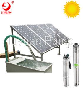'' Anti-Dürre 4 Solarwasser-Pumpe, versenkbare Solarpumpe
