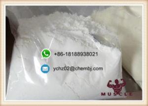 Vasodilator Poeder tegen hoge bloeddruk Minoxidil voor de Hernieuwde groei CAS van het Haar: 38304-91-5