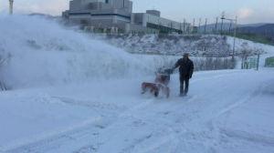 30 420cc d'entraînement de la chaîne de professionnels de la soufflante à neige en 3 étapes