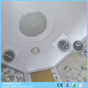 Corrediza de vidrio ducha de vapor (LTS-601)