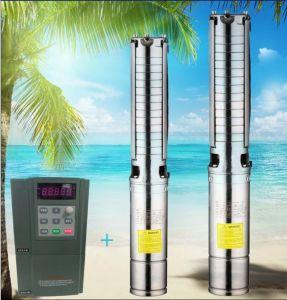 태양계 농업 수도 펌프 태양 수도 펌프 공급자 관개 태양 펌프