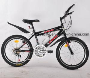 """16""""/20"""" jeune adolescent de Vélo VTT vélo de montagne (FP-KDB-17052)"""
