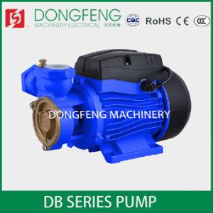 DB Périphérique d'arrosage de jardin la pompe à eau