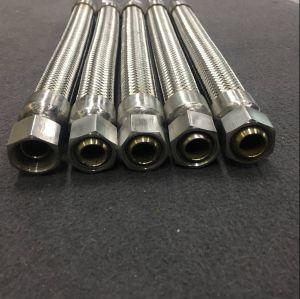 Tubo flessibile del metallo flessibile con il montaggio maschio femminile di Bsp NPT