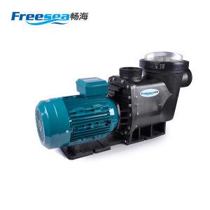 4kw 5.5HP Heavy Duty Piscine hautes performances pompe centrifuge