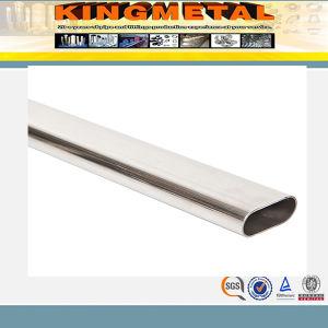 6inch Sch Std Ss310 Plain il tubo dell'estremità