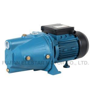 С самозаливкой домашнего использования воды Pump-Jet-серии B