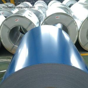 ASTM A755/A755m-2016 ha preverniciato la lamiera di acciaio d'acciaio del PCM dell'animale domestico del PVC della bobina vcm