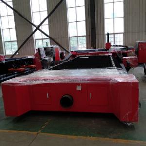 Metallo professionale della tagliatrice del laser di CNC dell'acciaio del silicone di disegno