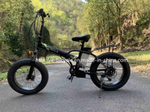 20 Mini Folding aluguer de bicicletas eléctricas dos pneus de gordura com bateria de lítio