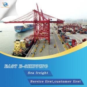 Conteneur de fret maritime professionnel de la mer de Guangzhou à l'Asie du sud-est par la mer