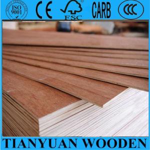 4*8 Bintongor Tamaño de la madera contrachapada en la ciudad de Linyi