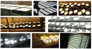 12W de LEIDENE Ovale Vochtbestendige Lamp van het Plafond voor Tuin